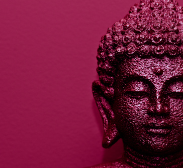 Psicosoft - Why You Should Be Practicing Buddhism Business